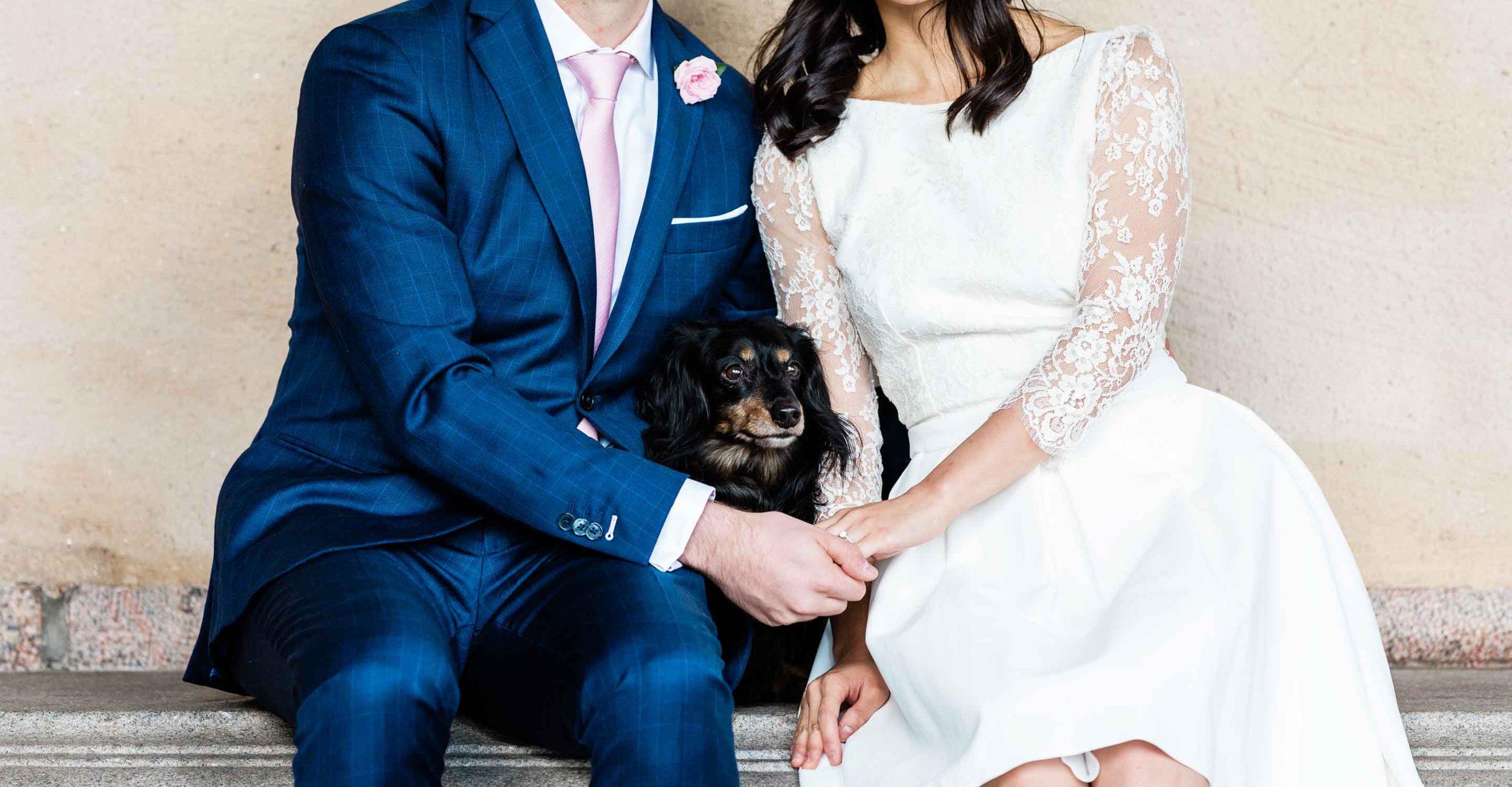 Hund på bröllop i Stadshuset
